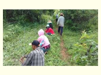 Experiência de Recaatingamento é socializada durante Seminário Nacional de Experiências Agroecológicas