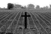 Júri Popular condena fazendeiro e integrante de milícia por homicídio de trabalhador sem terra