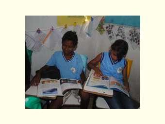 O uso de paradidáticos contextualizados fortalece o aprendizado de estudantes no Semiárido brasileiro