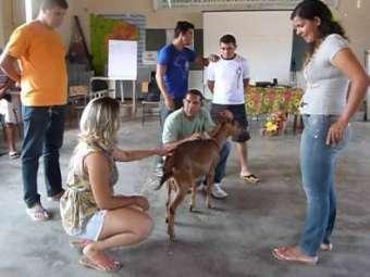 Manejo alimentar e sanitário do rebanho a partir do potencial da Caatinga é tema de palestra