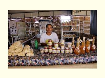 Mais de 70 empreendimentos da agricultura familiar estão cadastrados na Vila da Economia Solidária