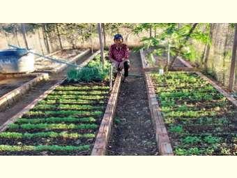 Agricultoras do Piauí aumentam produtividade e geram renda para suas famílias