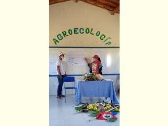 Agricultoras/es familiares do Sertão do São Francisco ficam mais próximas/os de obter a certificação orgânica participativa