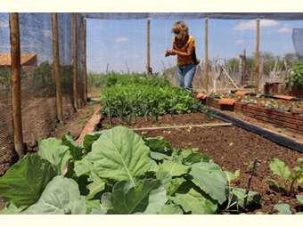 Projeto de Ater impulsiona o fortalecimento da segurança alimentar