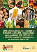 Sistematização final dos Núcleos de Execução do Projeto (NEP) com foco na organização dos sistemas de produção da agricultura familiar no Semiárido Brasileiro