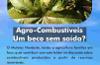 Agrocombust�veis